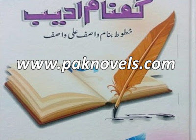 Gumnaam Adeeb Urdu Book