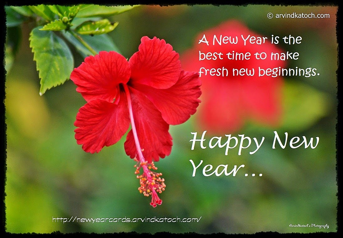 New Year, Fresh Beginning, Best Time, Happy New Year, Card