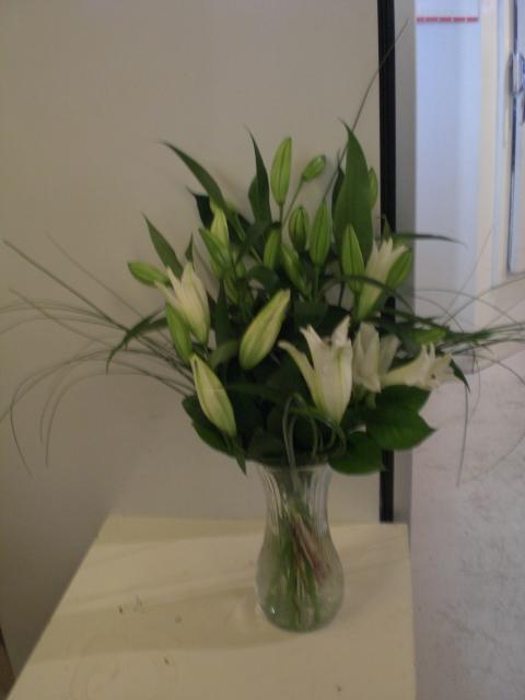montreal--florist,Fleuriste Montreal Quebec Canada: lily ...