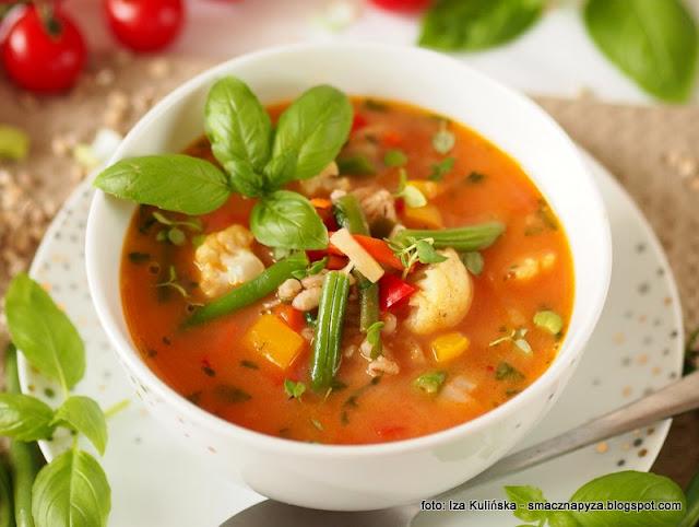zupa jarzynowa, kolorowe warzywa, peczak, wloszczyzna, poltino, smak lata, domowe jedzenie, zupy, pomidorowa z warzywami