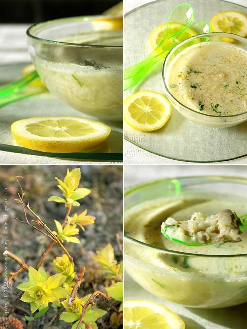 zupa cytrynowo-limonowa z kurczakiem i ryżem