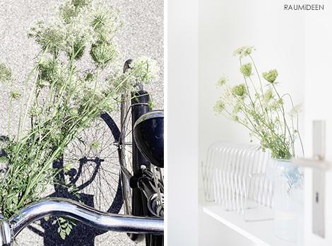 Blumendeko mit Wilder Möhre