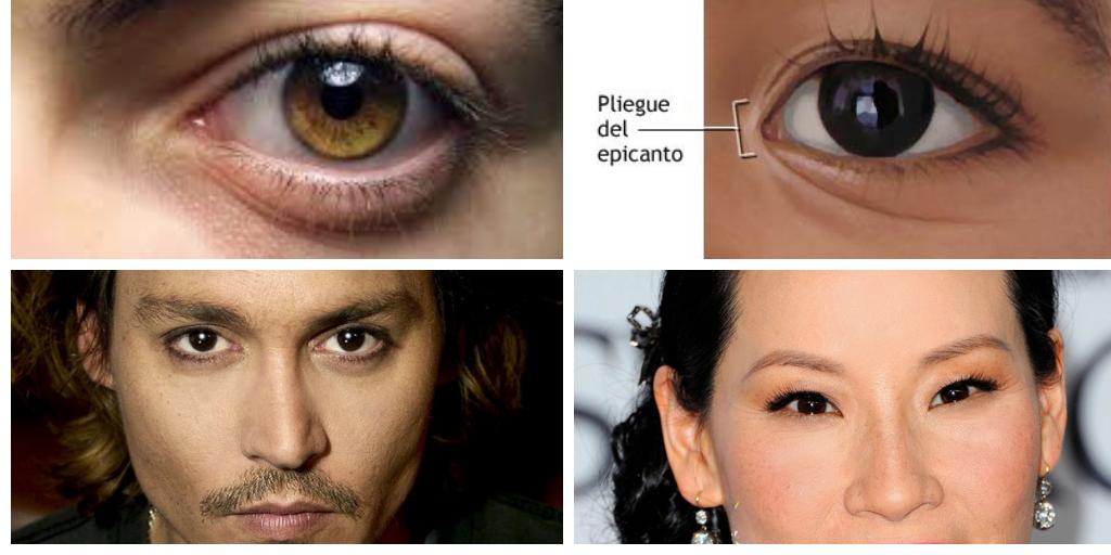 Cómo describir los ojos de los personajes asiáticos. 14 ejemplos ...