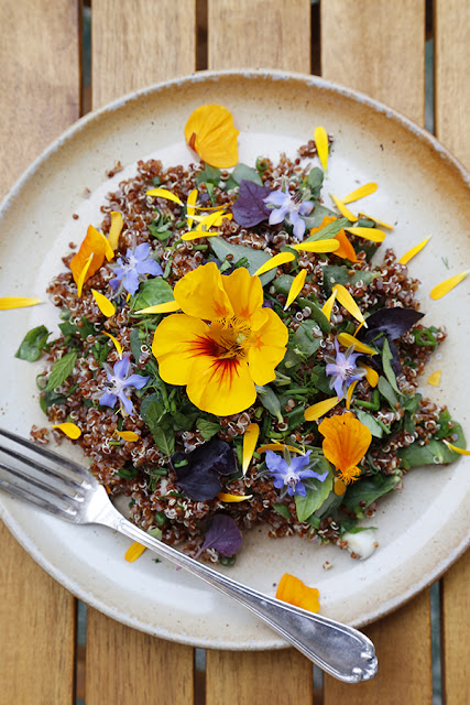 Edible-Flowers-Purslane-and-Quinoa-Salad