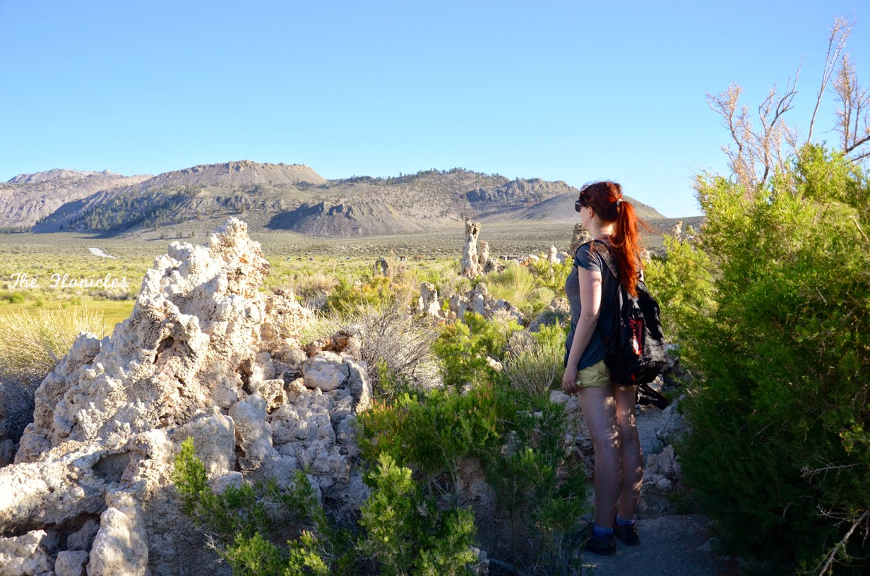 Mono Lake et Mammoth Lake (rencontre avec un coyote!)