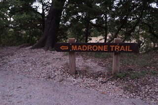 The Madrone Trail Trailhead