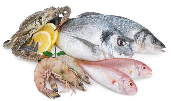 ikan penyubur dan penguat kandungan