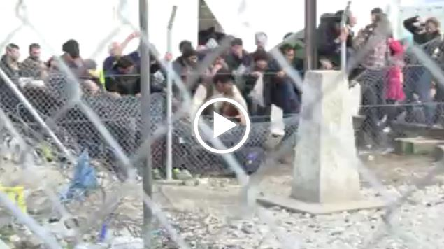 http://www.telma.com.mk/sites/default/files/vesti/video/strumica_-_migranti_22.02.mp4
