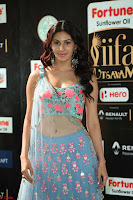Amyra Dastur in Flower Print Choli Transparent Chunni at IIFA Utsavam Awards025.JPG