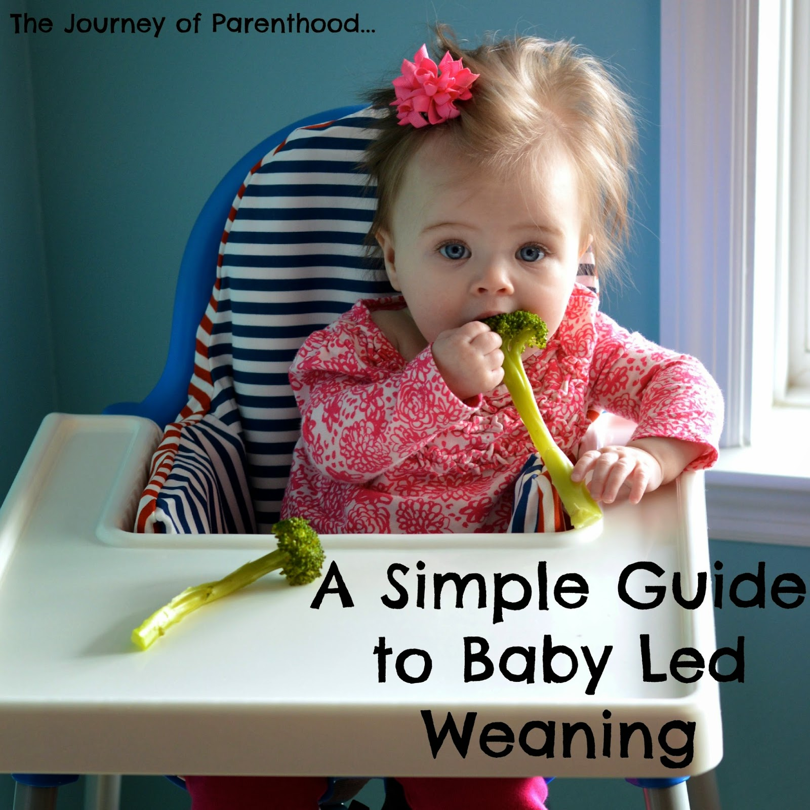 a simple beginner's guide to baby led weaning for feeding baby