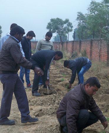 Project - Najafgarh Ish Vatika