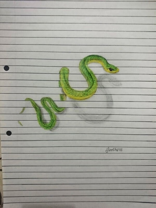 07-Green-Snake-Iantha-Naicker-Drawing-of-Lines-and-Animals-www-designstack-co
