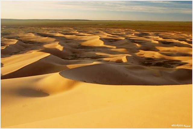 صحراء جوبي