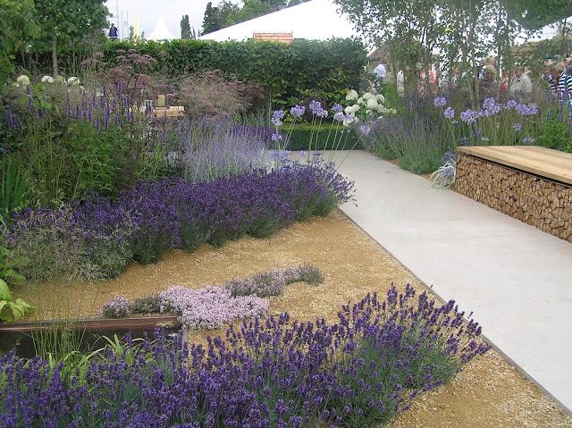 Vestra Wealth's Vista ogród pokazowy