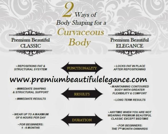 premium beautiful elegance - chempaka mohd din 9