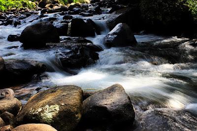 Kejernihan sungai Cireong