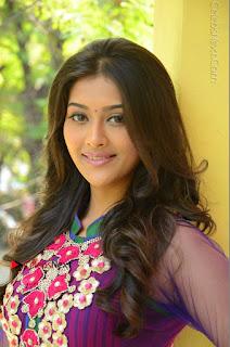 Actress Pooja Jhaveri Latest Stills in Purple Salwar Kameezt at Dwaraka Success Meet  0132.JPG