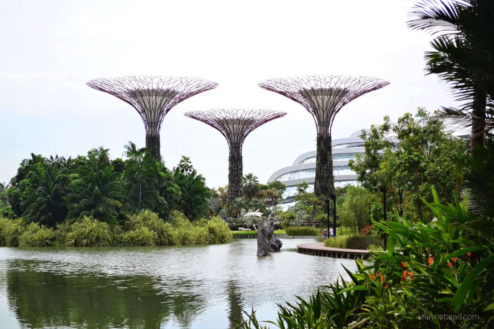 Gardens by the Bay (Photo Diary)