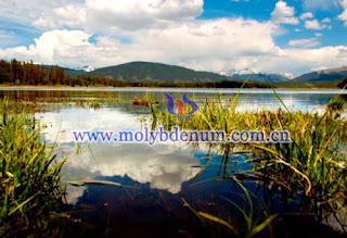 molybdenum pollution picture