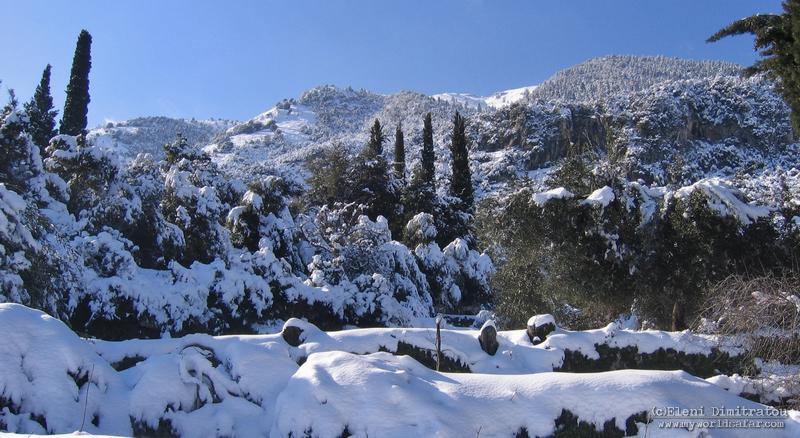 Αίνος με χιόνι, Ξενόπουλο Κεφαλονιά