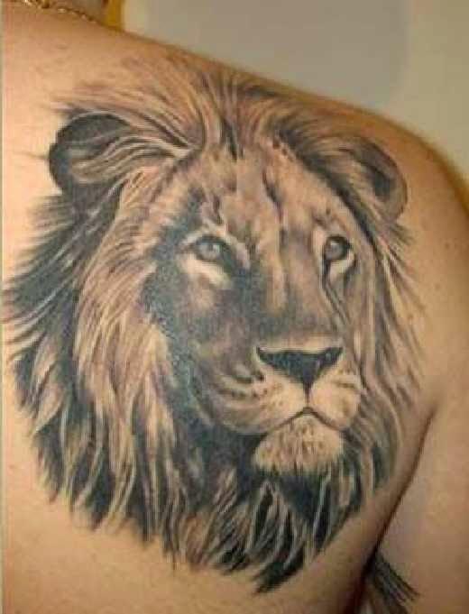 Tatuajes De Leones Tatuajes Para Hombres Imagenes Y Diseños