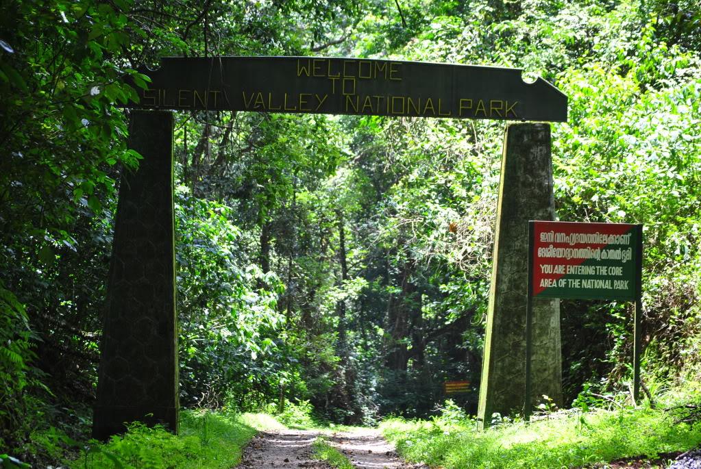 Tamilnadu Tourism: Silent Valley National Park, Palakkad ...