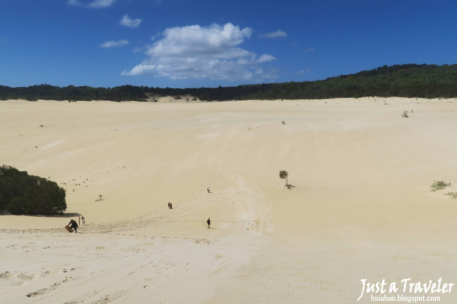 布里斯本-摩頓島-景點-沙漠-Desert-推薦-Sand-Boarding-澳洲-Brisbane-Moreton-Island-Tourist-Attraction-Travel-Australia