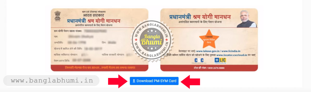 How to Apply Online Pradhan Mantri Shram Yogi Maan-dhan Yojana - Step 10