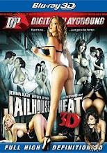 Jailhouse Heat xXx (2011)