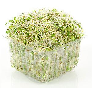 propiedades germinado de alfalfa