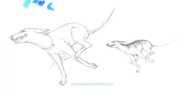 dog pencil sketch