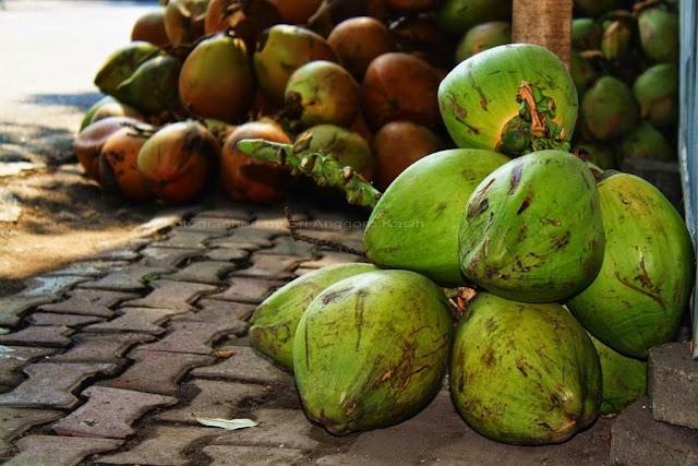 Kelapa camani atau kelapa hijau di pedagang es kelapa muda.