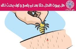 هل يموت النحل حقاً بعد ان يلسع وكيف يحدث ذلك