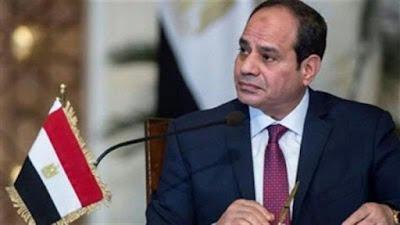 مصر, الجيش المصرى, الرئيس السيسى, الدعوة لاسقاط مصر والجيش, اعتذار الاميرة اسماعيل,