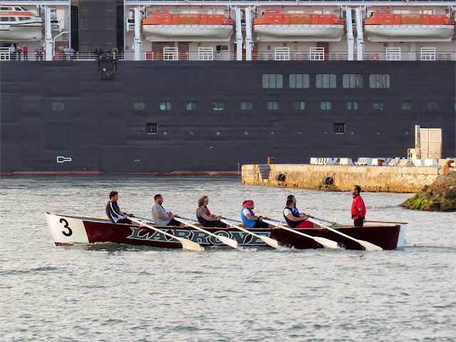 Labrone rowing crew in training, port of Livorno
