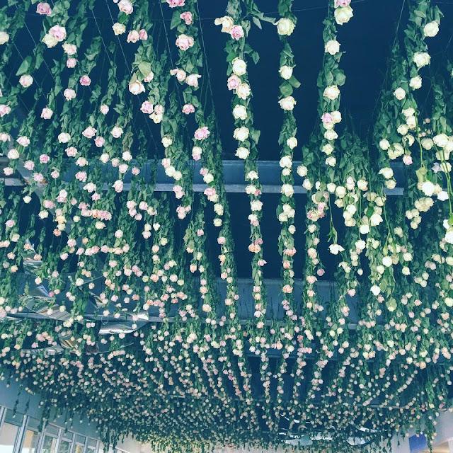 RHS Chelsea Flower Show Roses