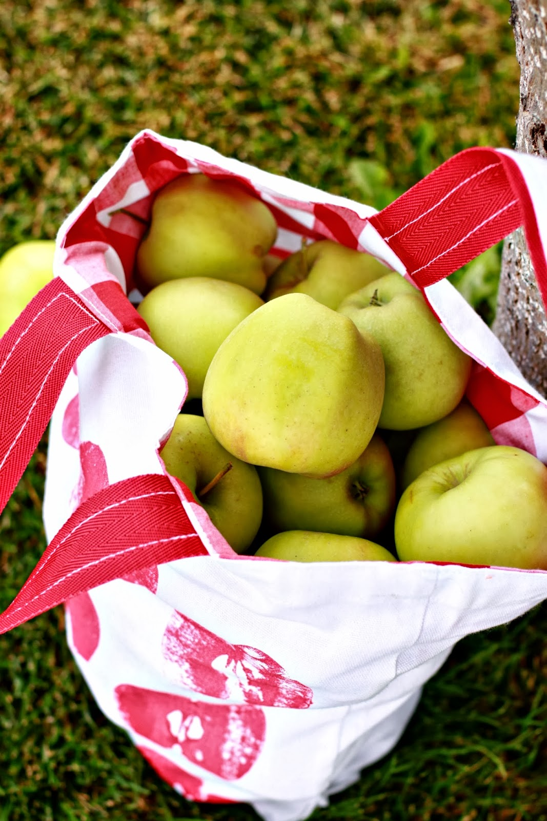 Larissa Another Day: Apple Week: Apple Picking Tote How-To