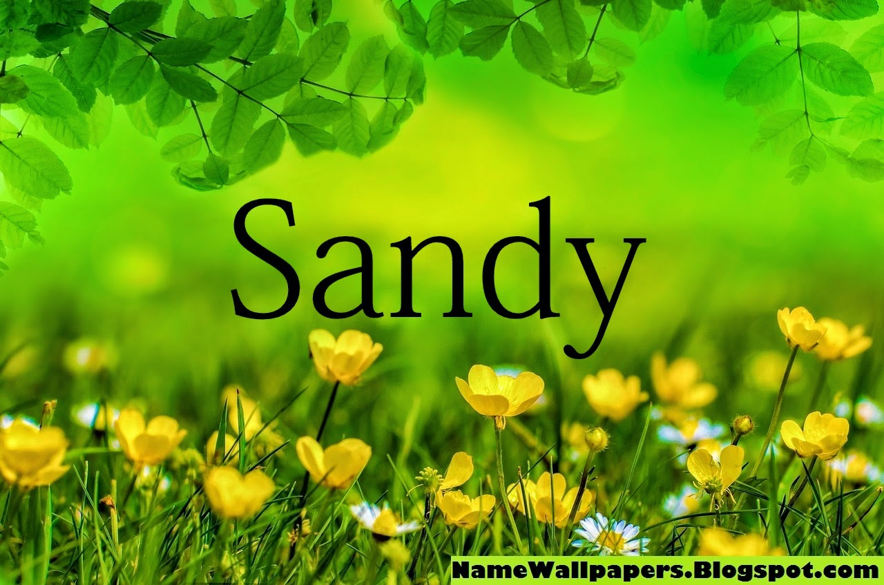 Sandy   Name...T B H Meaning