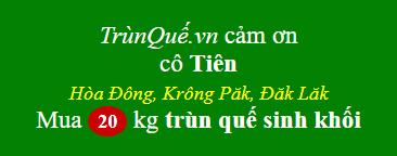Trùn quế về Hòa Đông - Krông Păk