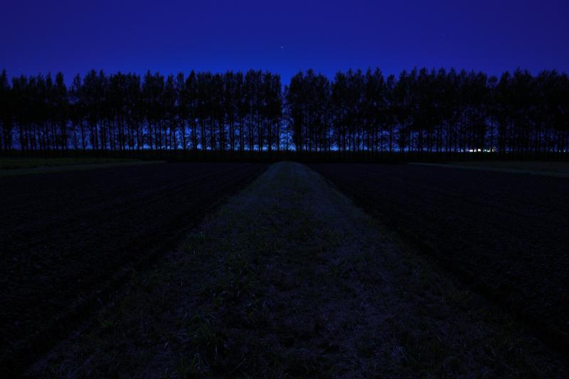 河北潟の並木道で撮影した月光写真