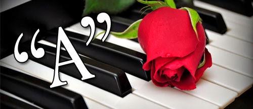 www.pianodaddy.com