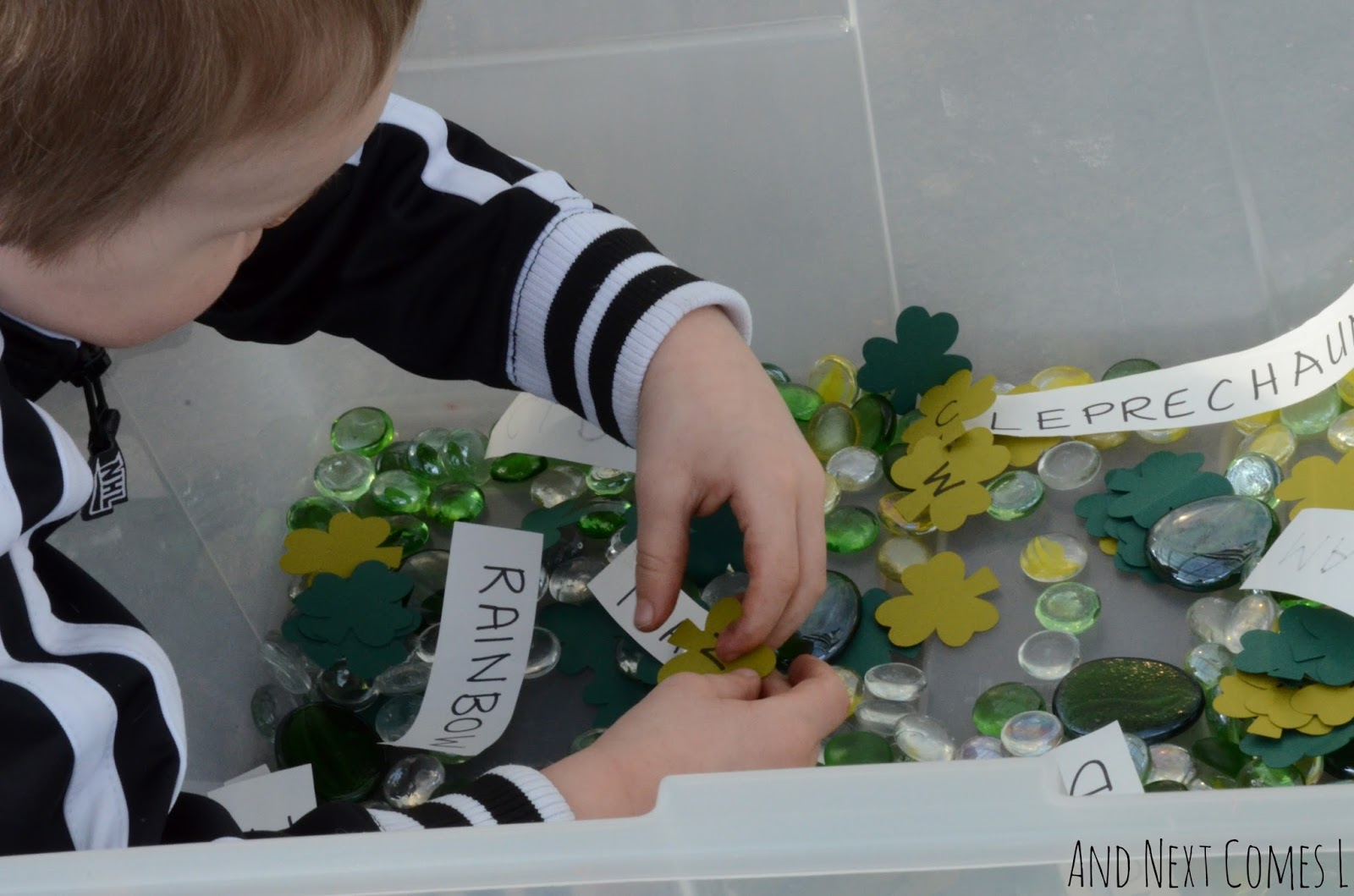 Exploring a literacy rich St. Patrick's Day sensory bin from And Next Comes L