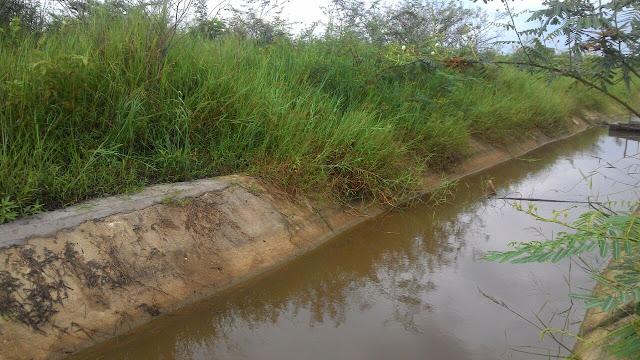 Proyek Irigasi Sawah di Sekoja, Amburadul