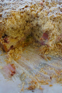 Rhubarb Crumb Cake: Savory Sweet and Satsifying