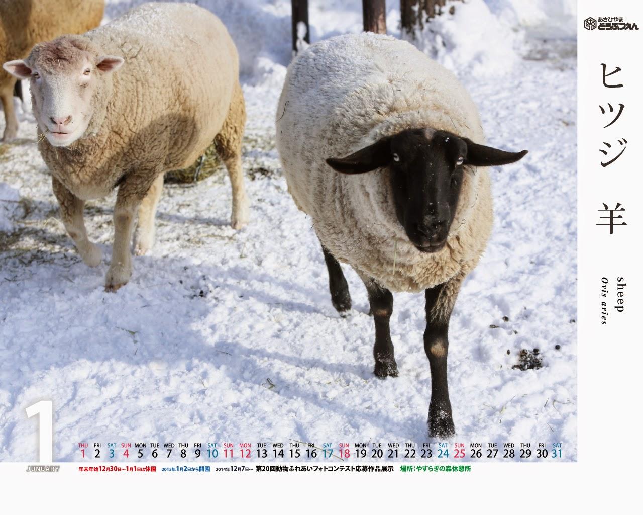 今月の壁紙カレンダー 15年1月壁紙カレンダー