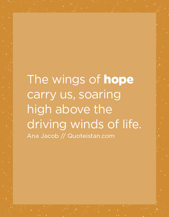 The wings of hope carry us, soaring high above the driving winds of life.