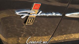 Ford Galaxie Fender Badge