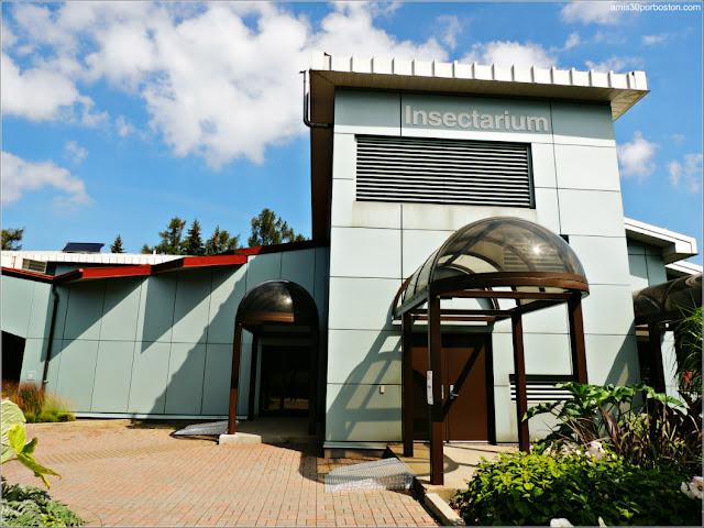Insectarium del Jardín Botánico de  Montreal