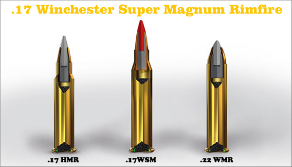 AMMO AND WEAPONS MUNICIJA I ORUJE 17 Winchester