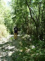 プロレル頂上 sommet du Prorelへの散歩道